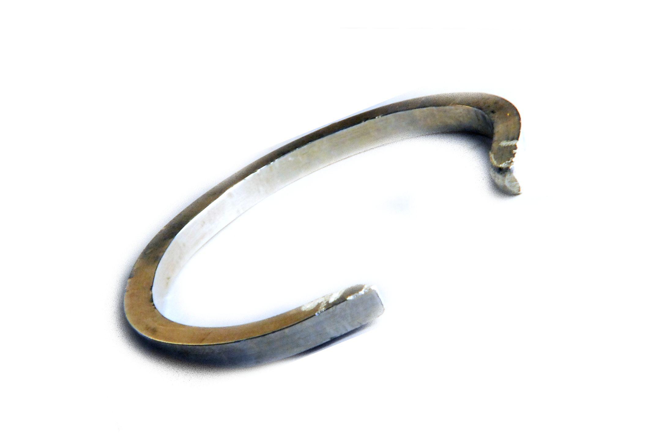 Silver Horse Shoe